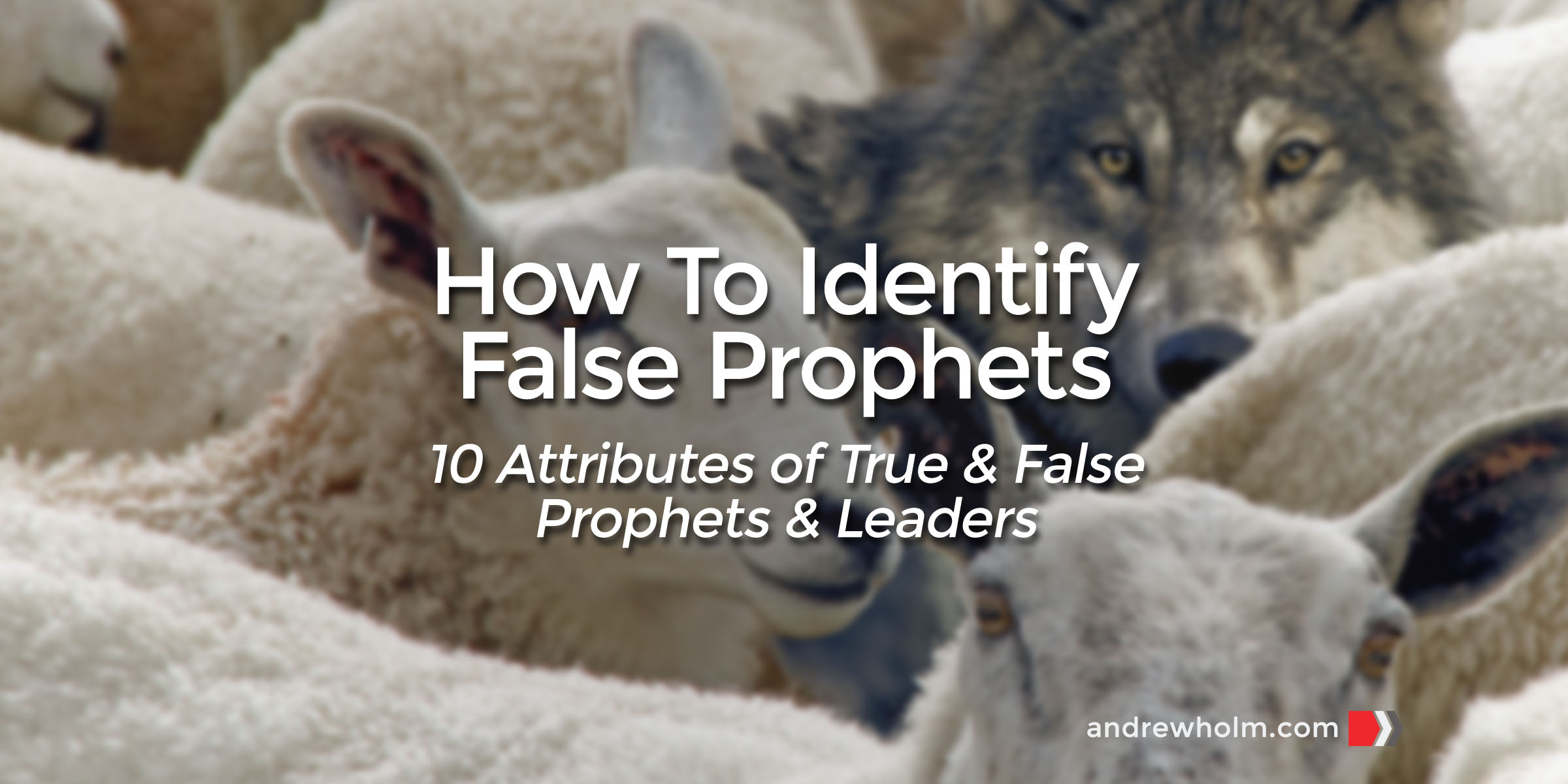 How to Identify False Prophets